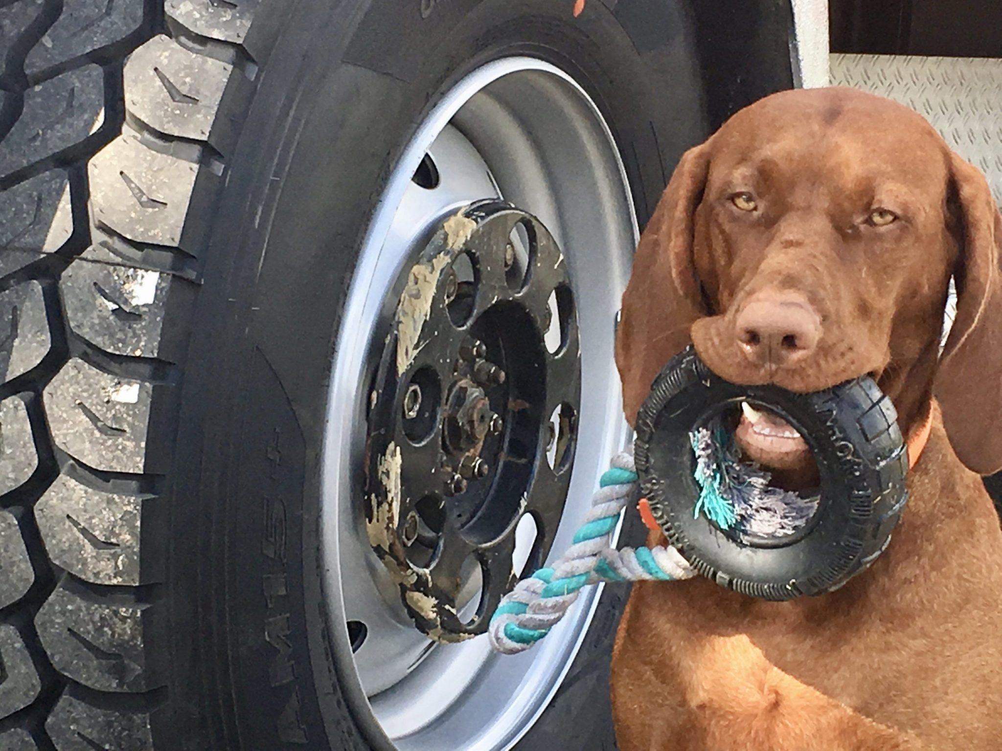 Neue Reifen für unser Reisemobil