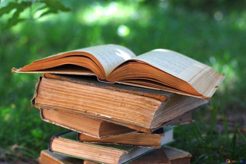 Bücher zum Thema Reisen, Abenteuer und Selbstfindung