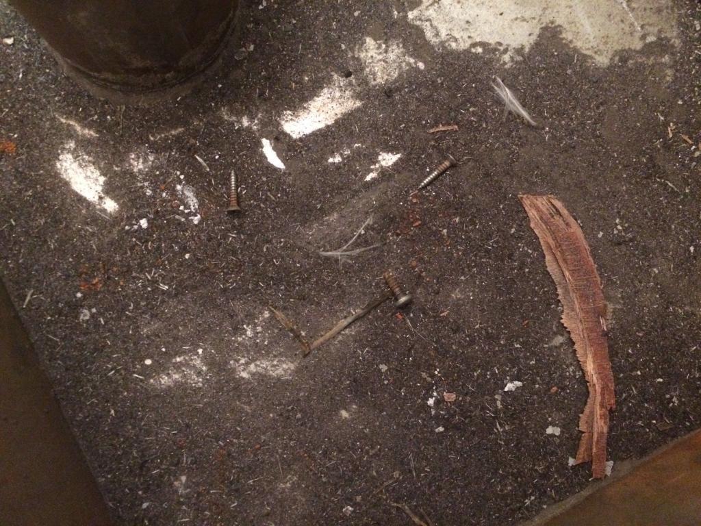 Eine dicke Schicht Stahlstaub liegt auf dem Tankboden