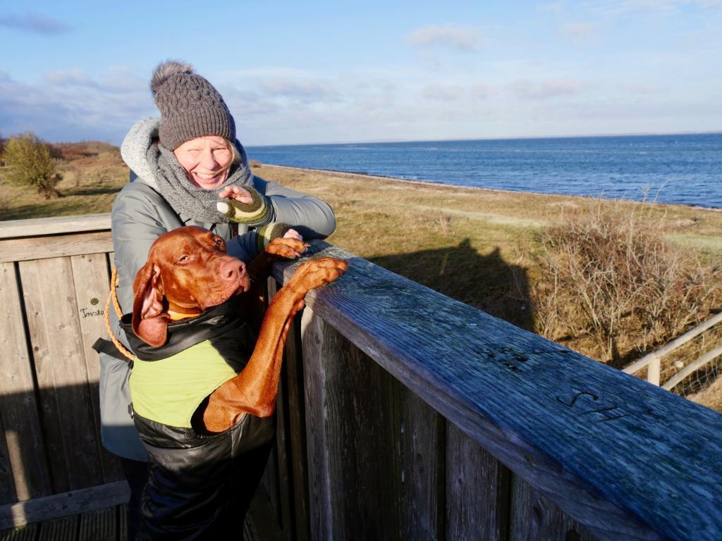 Wandern mit Nala an der Ostsee. Mit Hund am Meer.