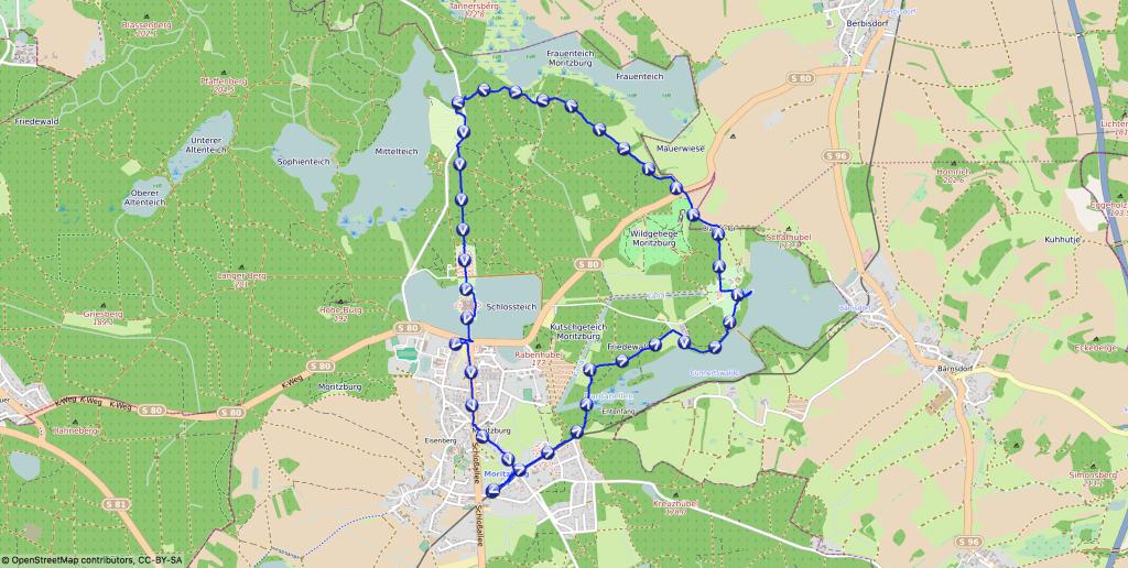 Mit Hund rund um die Moritzburg wandern