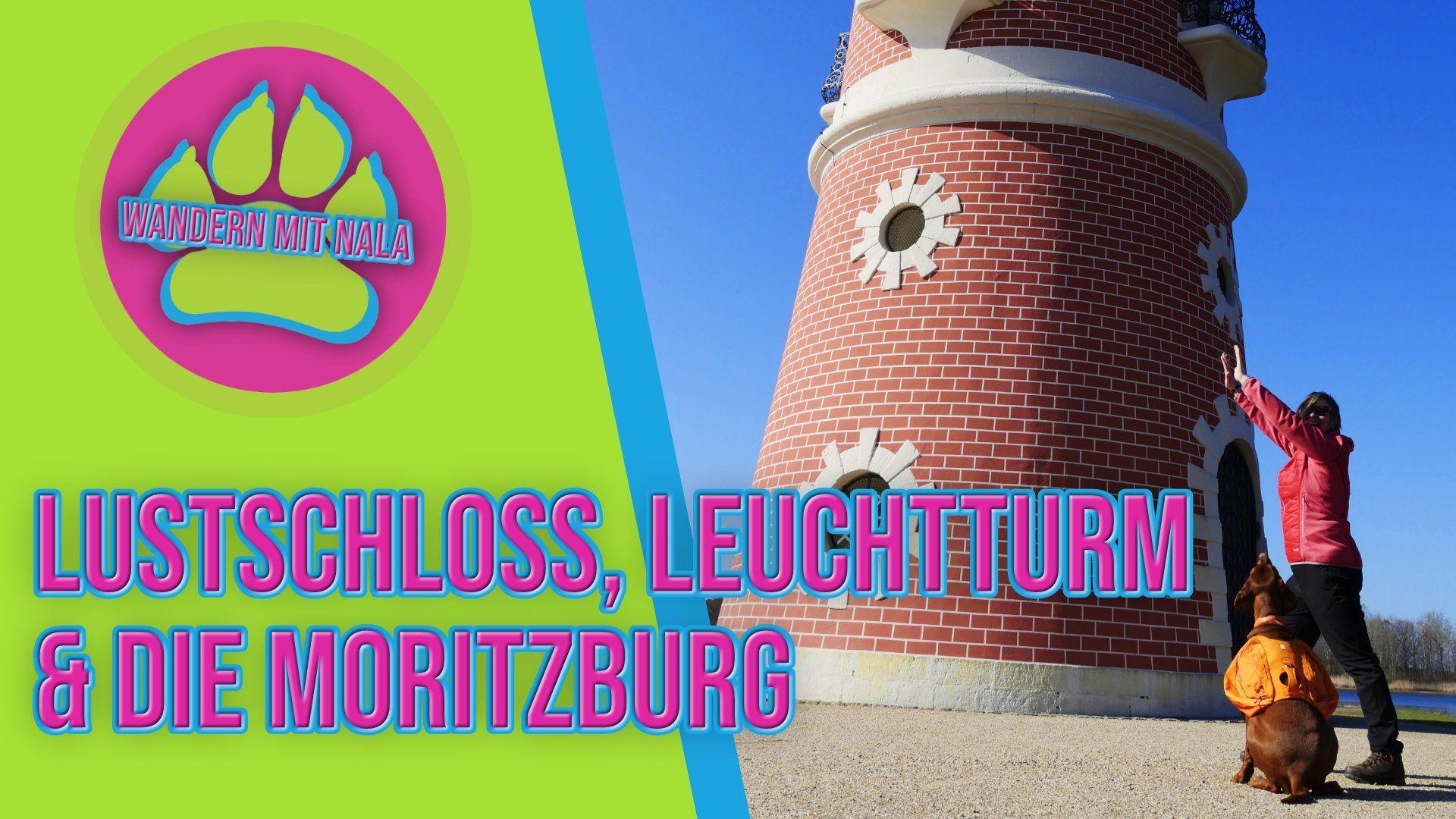 Mit Hund unterwegs zu Lustschloss, Leuchtturm und Moritzburg