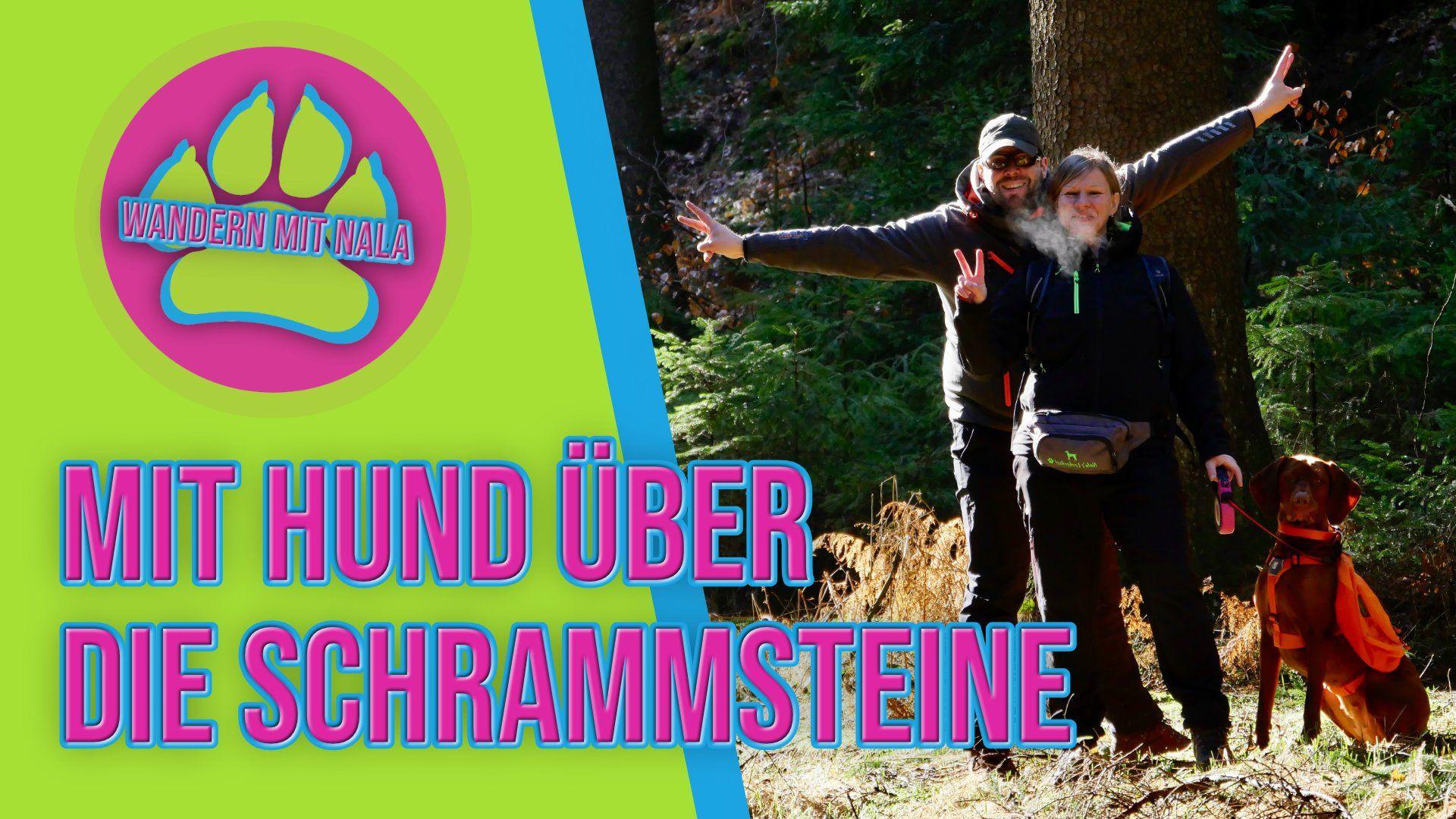 Wandern mit Nala - Über die Schrammsteine