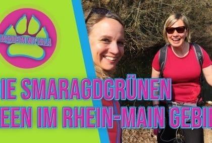 Wandern mit Nala - Die smaragdgrünen Seen im Rhein-Main Gebiet