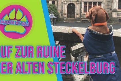 Wandern mit Nala - Auf zur Ruine der alten Steckelburg