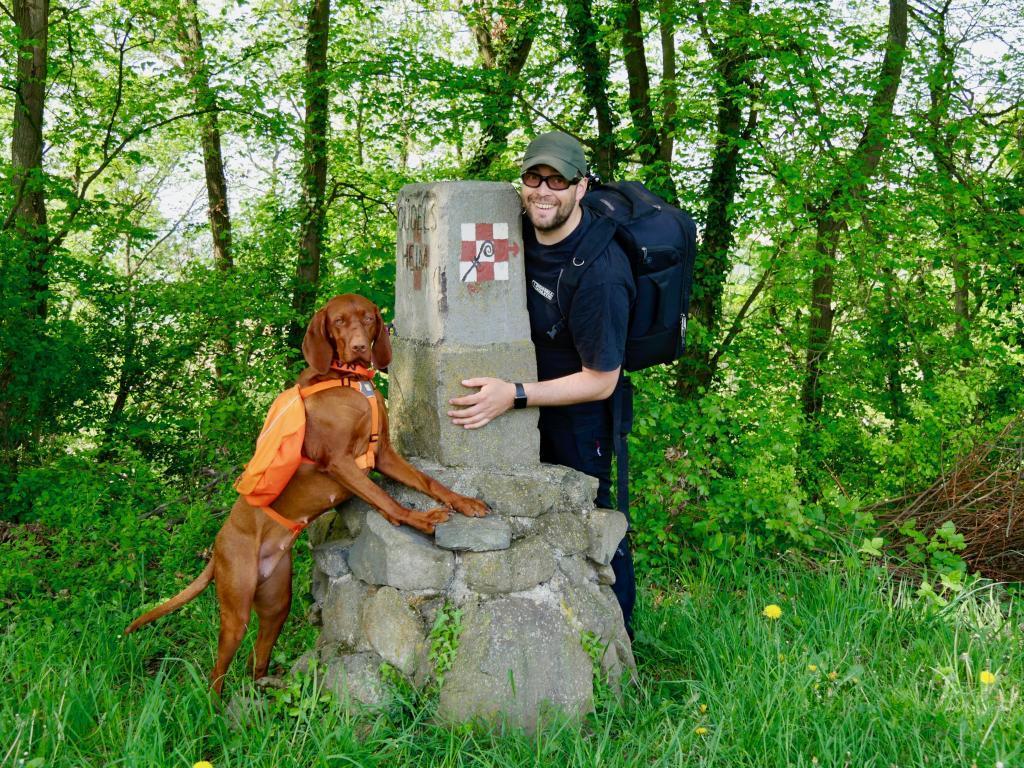 Wir folgen dem Wegzeichen für dem Keltenpfad zum Keltenmuseum