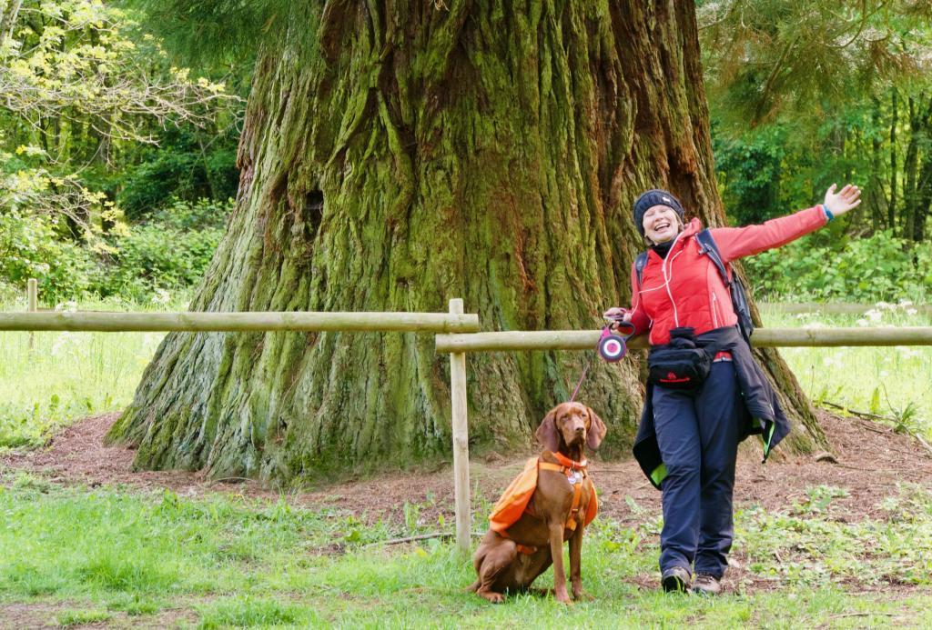 Elfi und Nala posieren vor dem mächtigen Stamm des Mammutbaums
