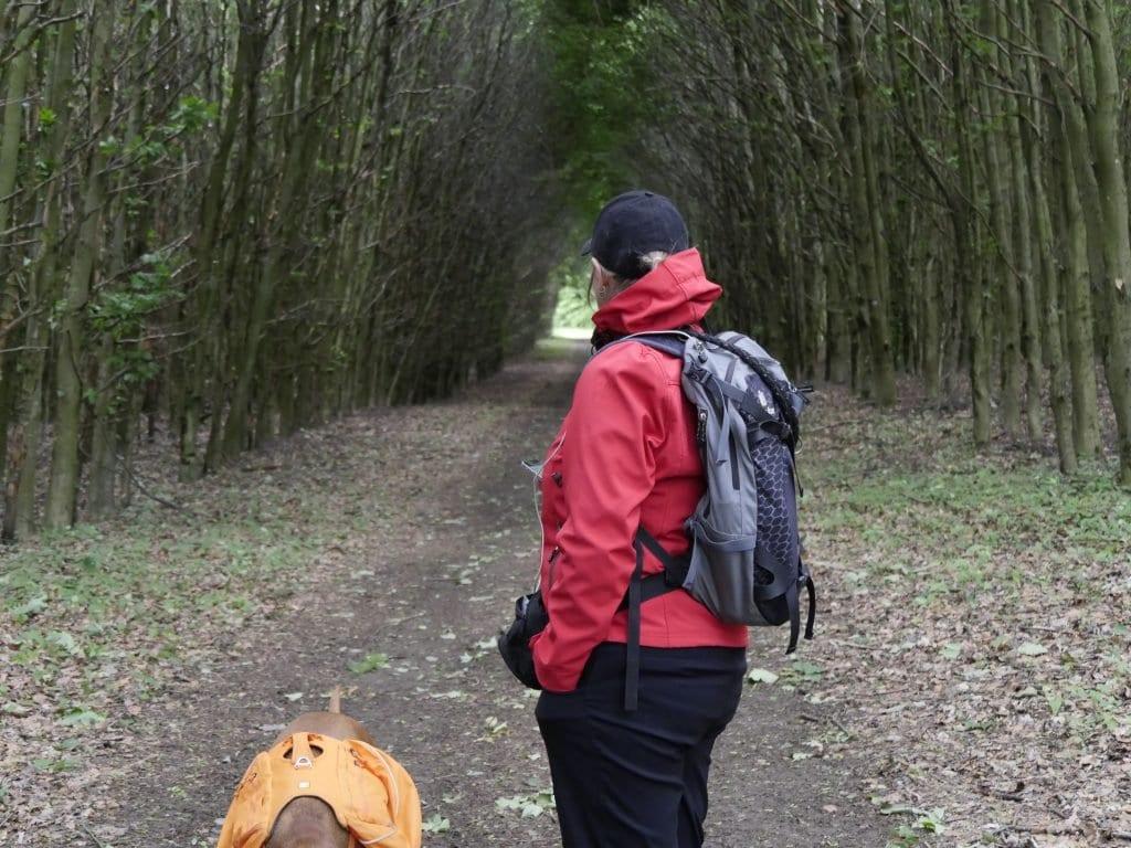 Wir finden Unterschlupf vor dem Wind in einem kleinen Wald