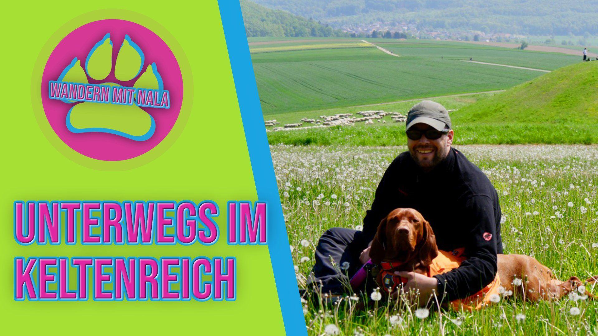 Wandern mit Hund - Keltenreich Glauberg