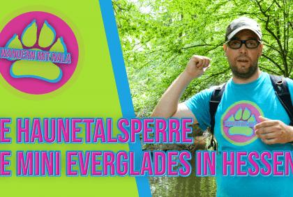 Wandern mit Nala - Die Haunetalsperre - Die Mini Everglades in Hessen