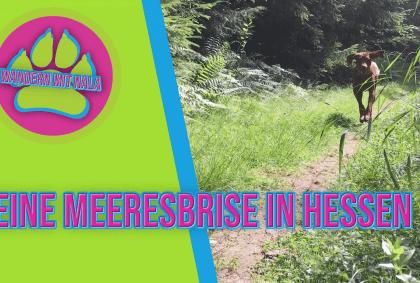 Wandern mit Nala - Eine Meeresbrise in Hessen