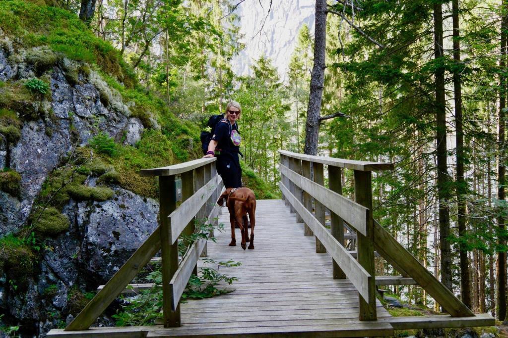 Kleine Brücken führen über die Bäche