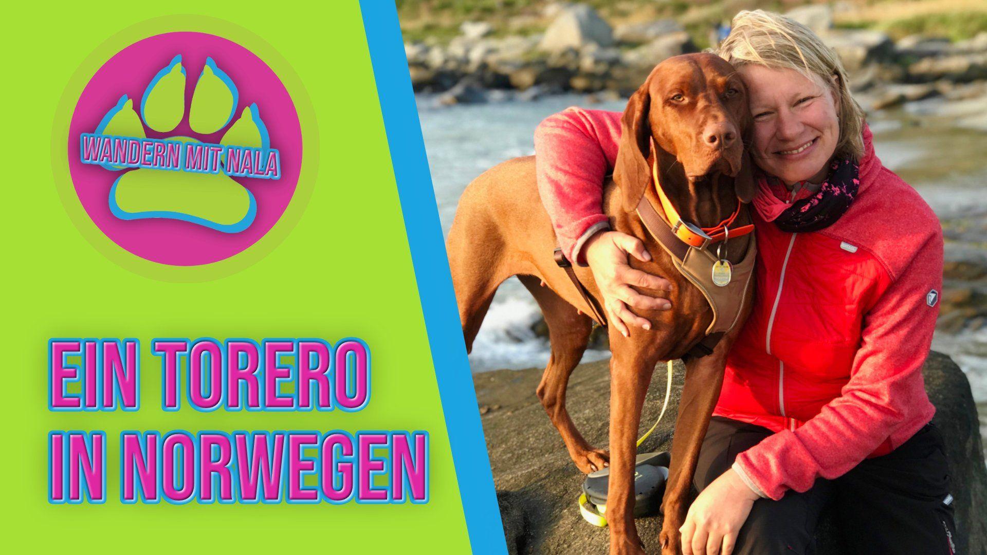 Ein Torero in Norwegen - Wandern mit Nala