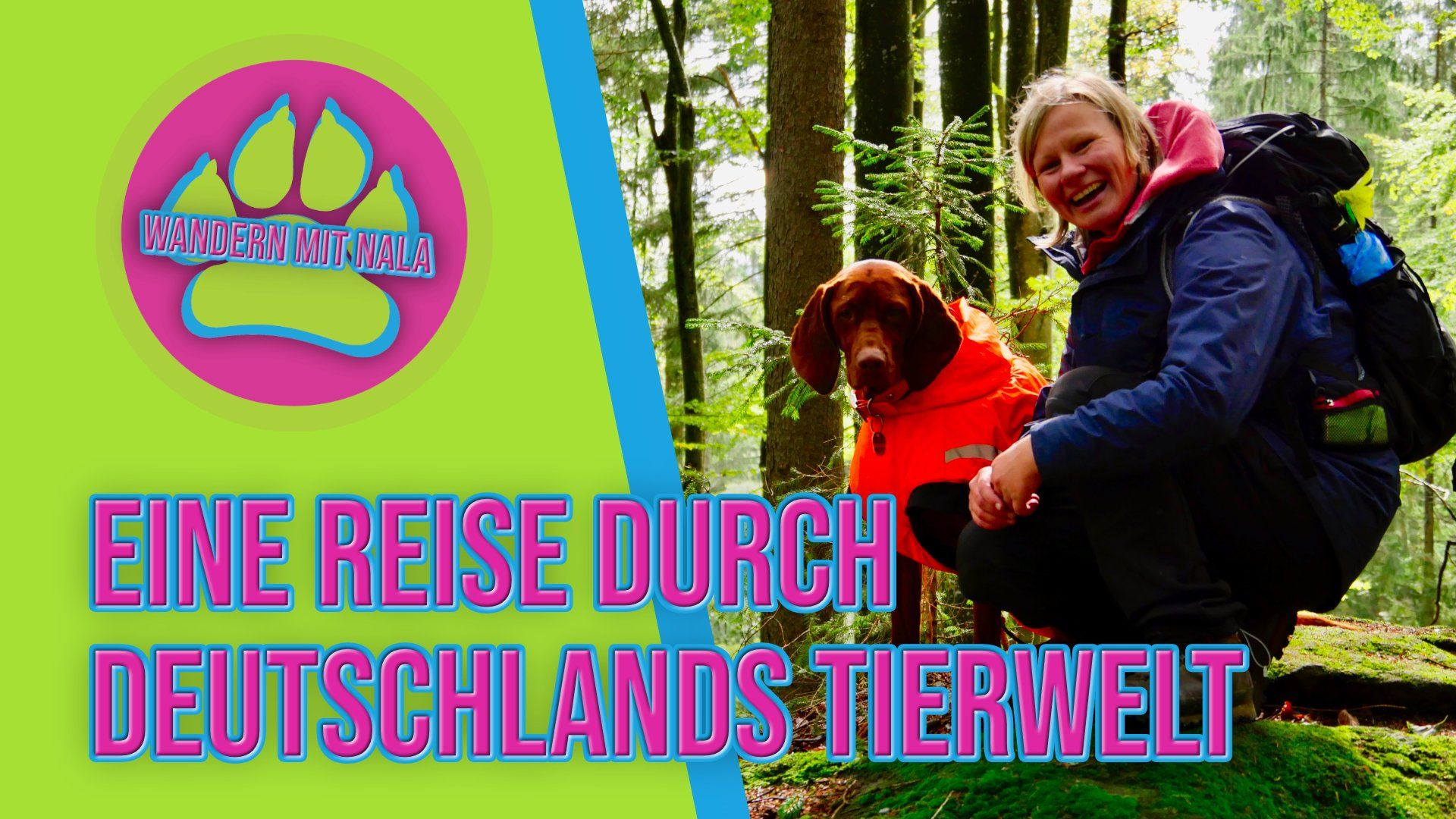 Durch die Tierwelt Deutschlands wandern