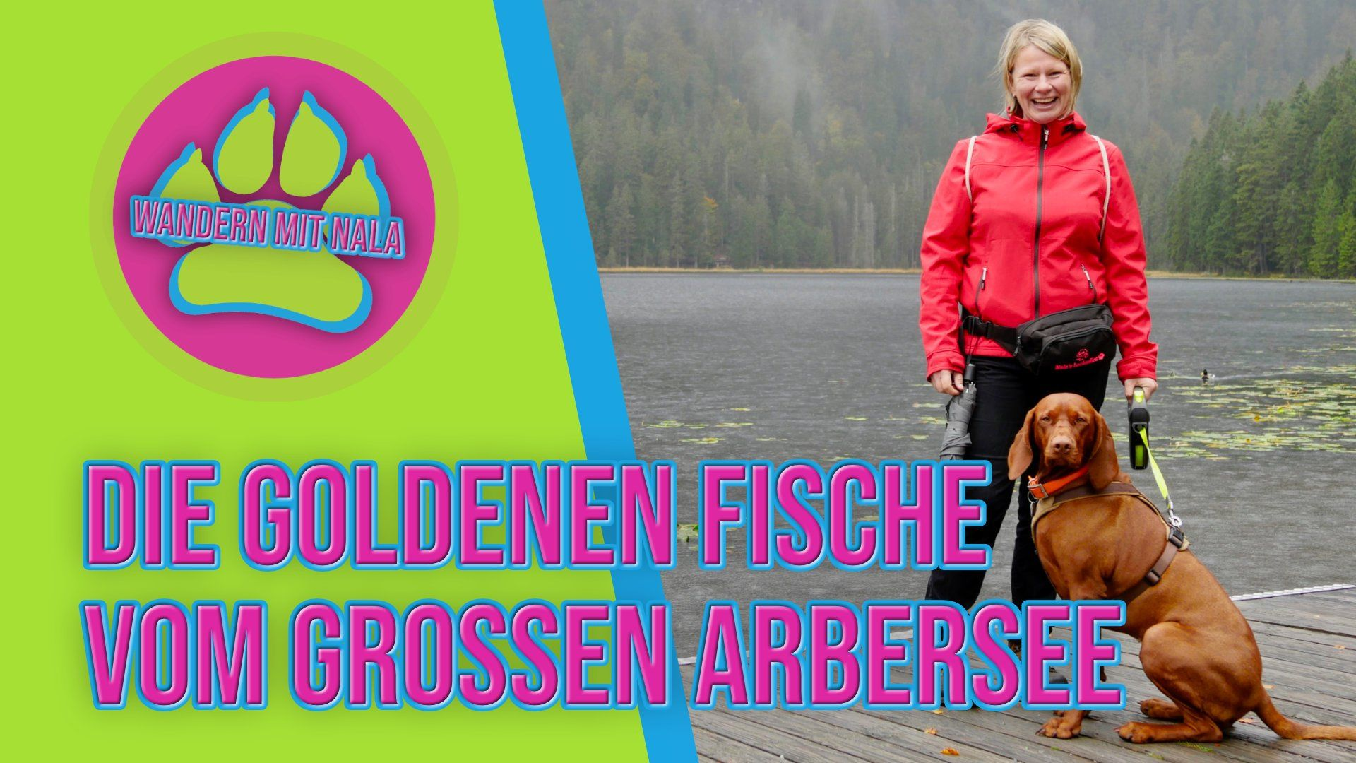 Wandern mit Hund am Großer Arbersee