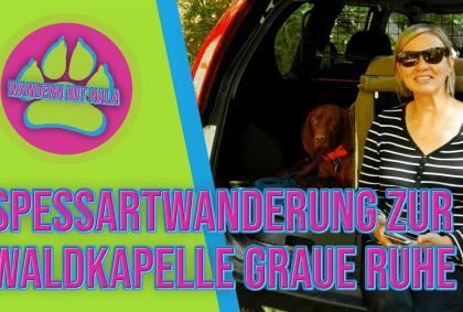 Die Waldkapelle 🌳⛪ im Spessart – Graueruh – Bad Orb – Spessart – Wandern mit Hund 🐕