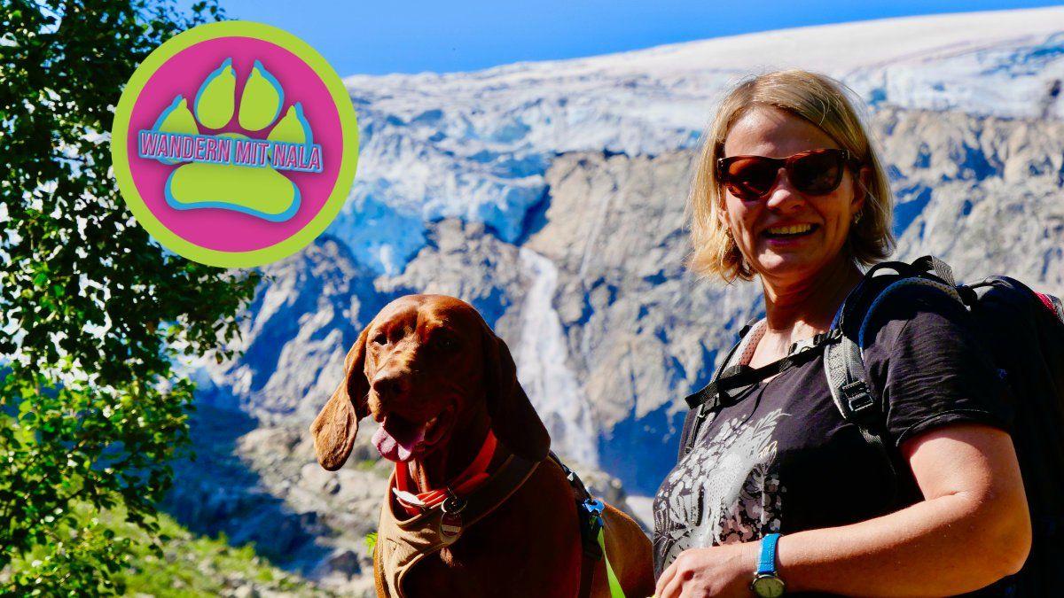 Hoch auf den Gletscher - Buarbreen - Norwegen - Wandern mit Hund