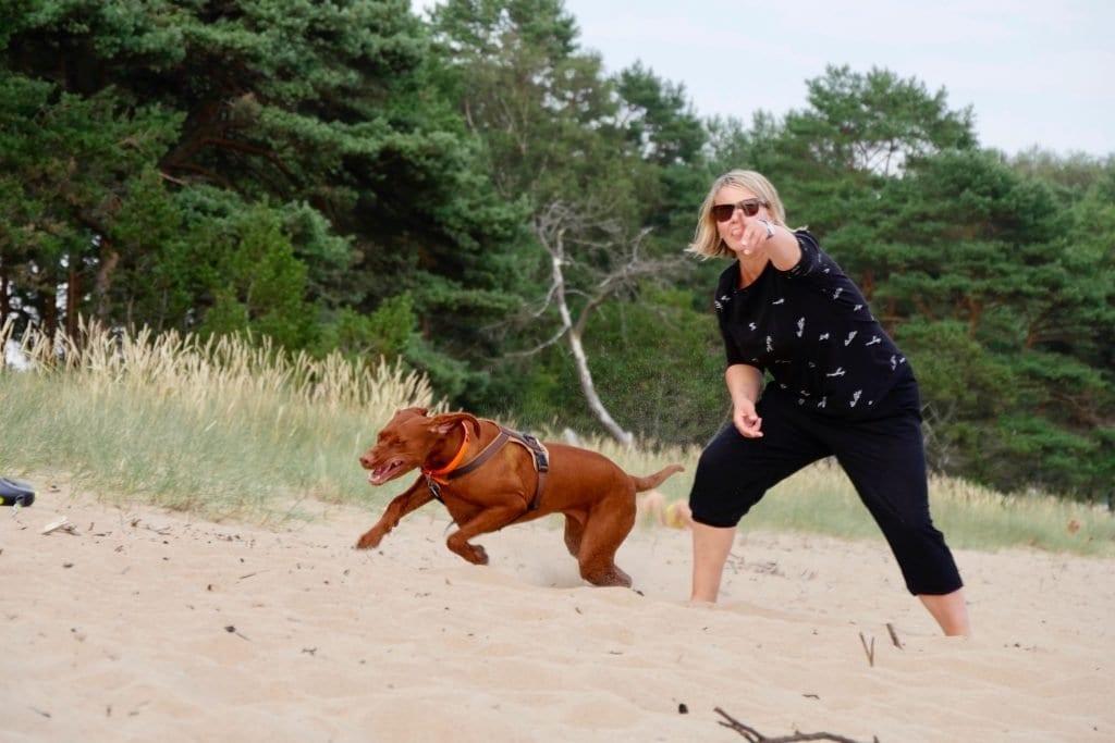 Apportiertraining: Frauchen und Hund in Action