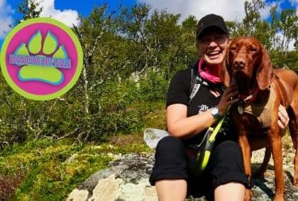 Wandern mit Hund im norwegischen Fjell