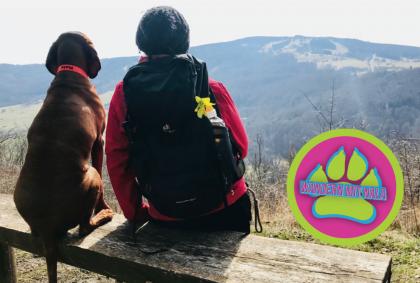Hoch zur Osterburg - Rhön - Wandern mit Hund