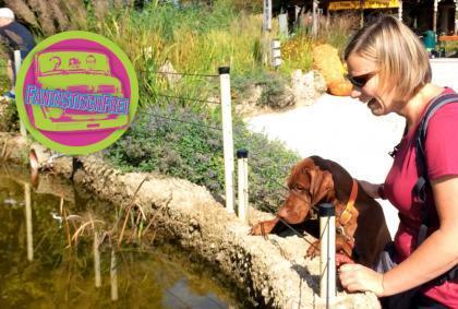 Der Heimweg – Zwischenstopp im Zoo Salzburg – Österreich 🇦🇹 – Mit dem Auto 🚗 durch den Balkan 09/09