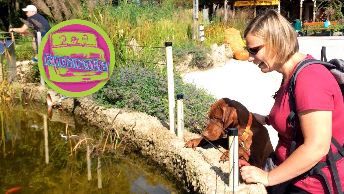 Mit Hund unterwegs im Zoo Salzburg Hellbrunn
