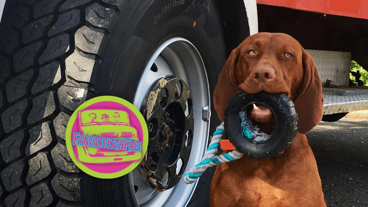 Neue Reifen für unser Expeditionsfahrzeug