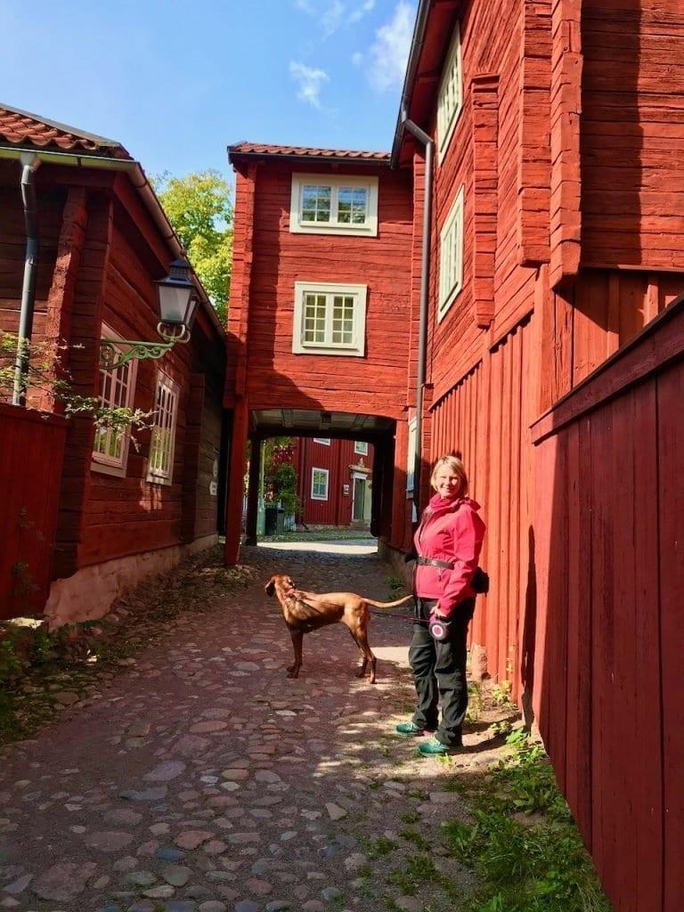 Die falunroten Häuser von Gamla Linköping