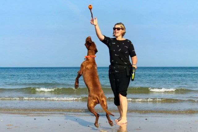 Abfahrt Richtung Dänemark 🇩🇰 – Skandinavien Tour mit Hund 2019 – E01